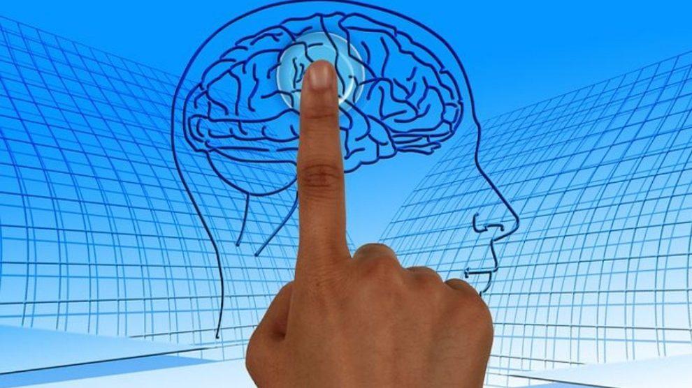 Il 'cancello' anti-ansia del cervello: scoperto meccanismo che blocca depressione e non solo