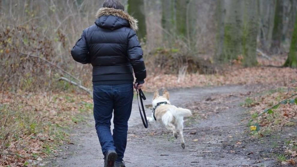Va dall'amante col cane ma l'animale fa scoprire tutto alla moglie: 50enne cacciato di casa
